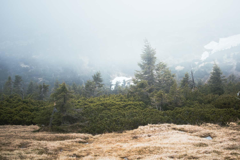 Riesengebirge - Pantschefall Wandern zur Elbquelle