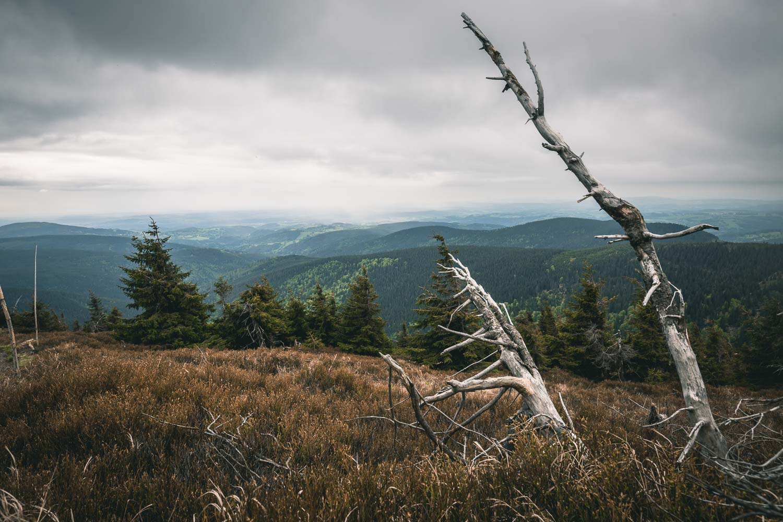 Riesengebirge Wandern Pantschefall zur Elbquelle